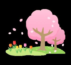 spring_tulip_sakura_1198
